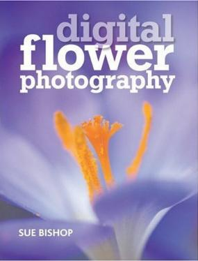 Digital Flower Photography by Sue Bishop