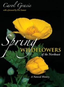 Spring Wildflowers of the Northeast by Carol Gracie
