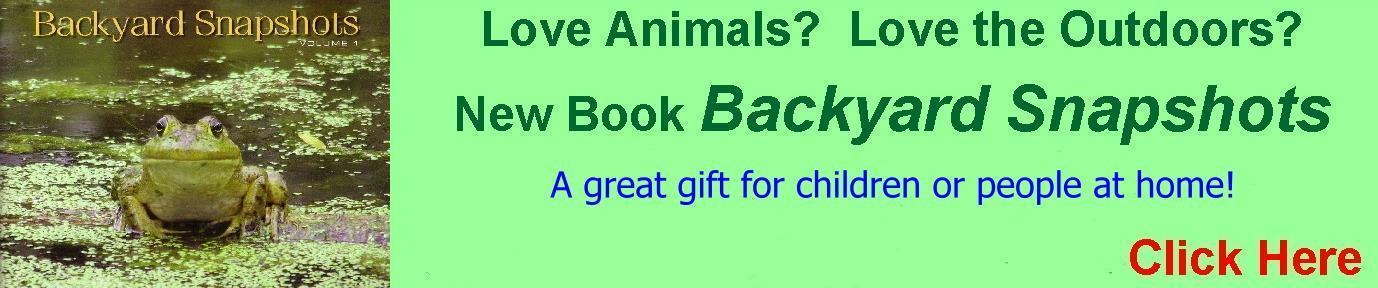 Wonderful Gift Ideas for the Animal Lover in You!